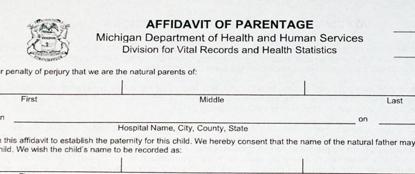 Michigan paternity legal forms titled Affidavit of Parentage